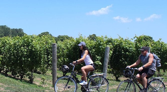 Discovering the wineries of Ontario: Windsor-Essex